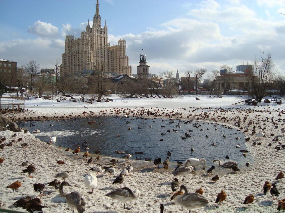 مشهد يطل على ناطحة السحاب في ساحة كودرينسكايا