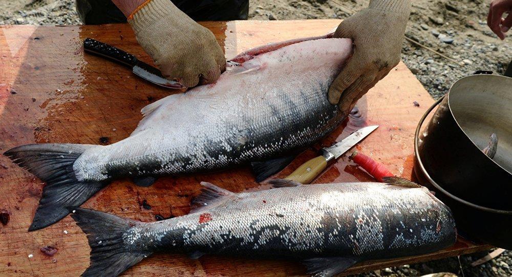 في مقدمتها الطهي بالبخار... 6 طرق صحية لطهي الأسماك