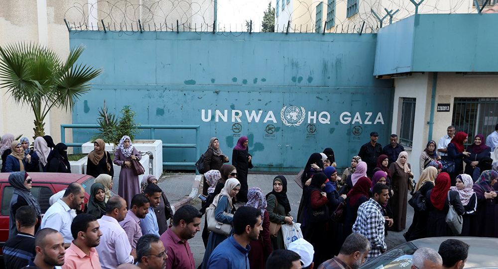 الأونروا غزة