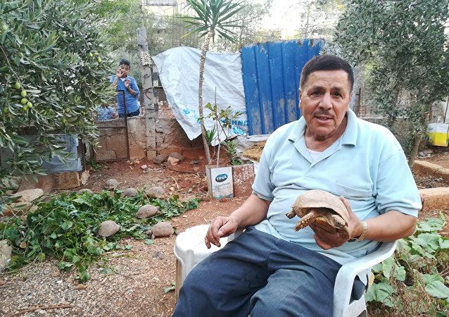 سوري أنقذ سلحفاة في زمن الحرب أبو عبدو