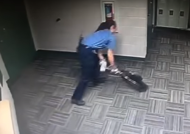 شرطة تلاحق راكون