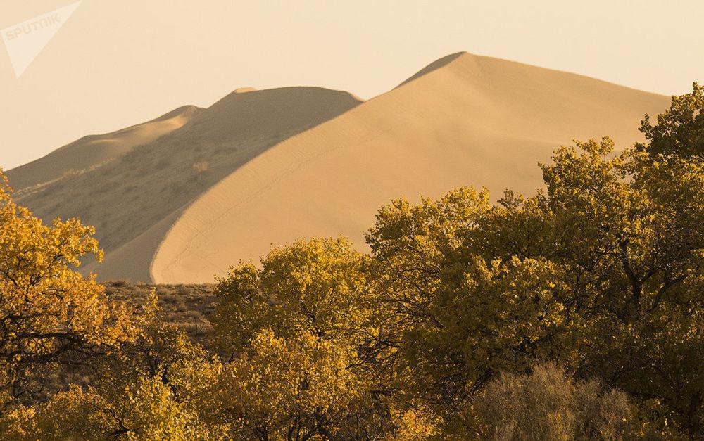 حديقة ألتين-إيميل الطبيعية الوطنية في كازاخستان