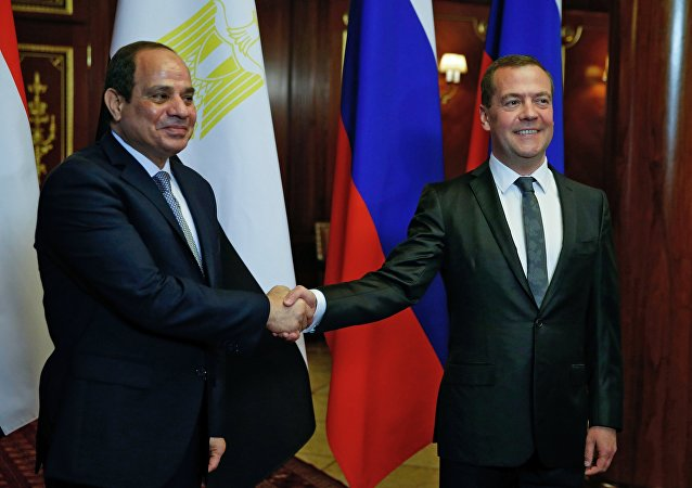 رئيس الوزراء الروسي دميتري مدفيديف خلال لقائه الرئيس المصري عبد الفتاح السيسي