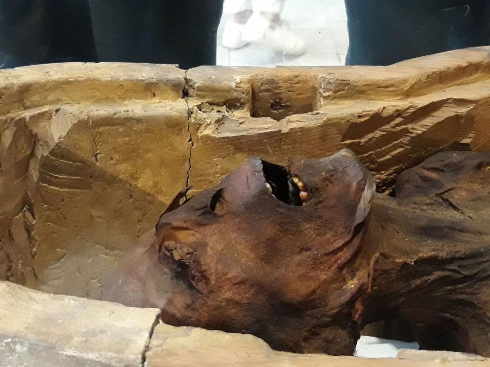 المومياء الصارخة في متحف الفاهرة، 14 فبراير/ شباط 2018