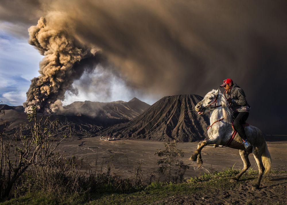 صورة بعنوان On Guard، للمصور ريكسا ديوانتارا، الحاصل على المرتبة الثانية في فئة رحلات ومغامرات