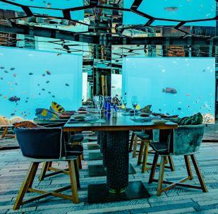 مطعم تحت الماء Anantara Kihavah، جزر المالديف