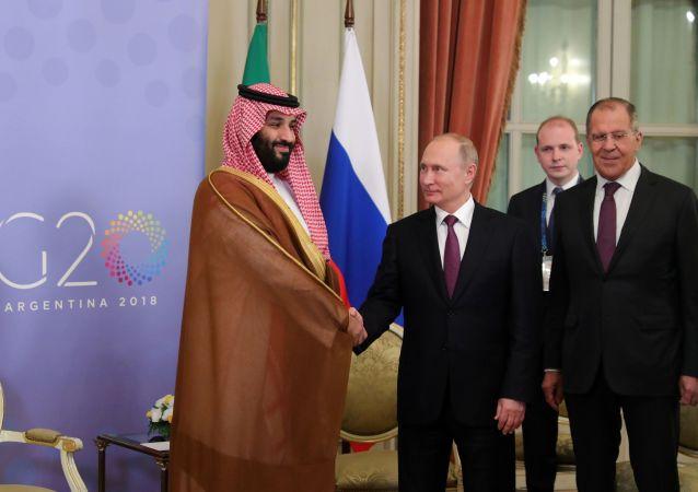 قمة مجموعة العشرين في بوينس آيرس، الأرجنتين،  1 ديسمبر/ كانون الأول 2018 - الرئيس فلاديمير بوتين خلال اللقاء مع ولي العهد السعودي محمد بن سلمان في قمة G20