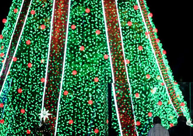 الرئيس الأمريكي دونالد ترامب وزوجته ميلانيا ترامب يقفان أمام شجرة عيد الميلاد في واشنطن، الولايات المتحدة الأمريكية 28 نوفمبر/ تشرين الثاني  2018