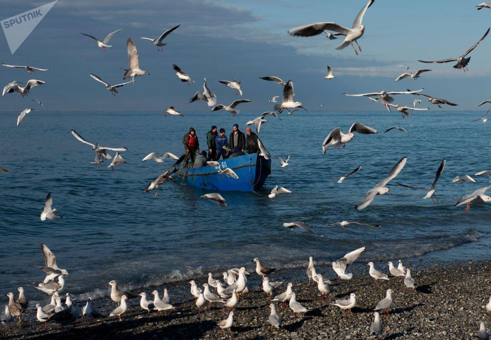 صيادون في البحر الأسود بمدينة سوتشي