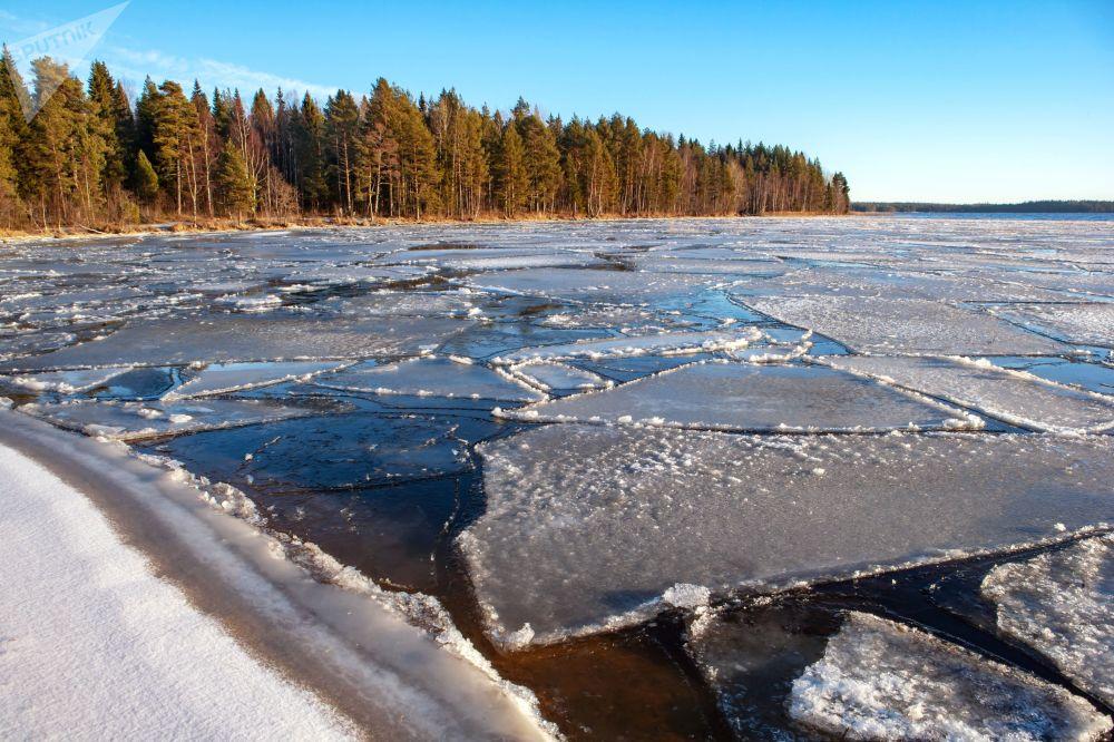الجليد يطفو على ضفاف بحيرة أونيغا في منطقة جمهورية كاريليا