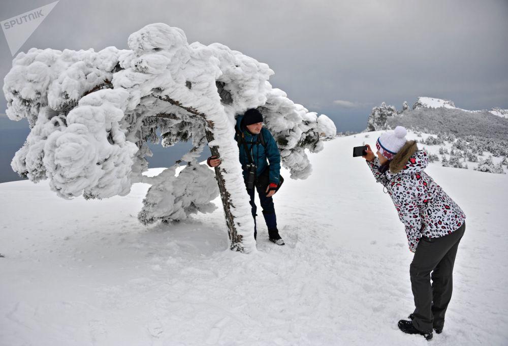 جلسة تصوير على جبل آي بيتري في شبه جزيرة القرم الروسية