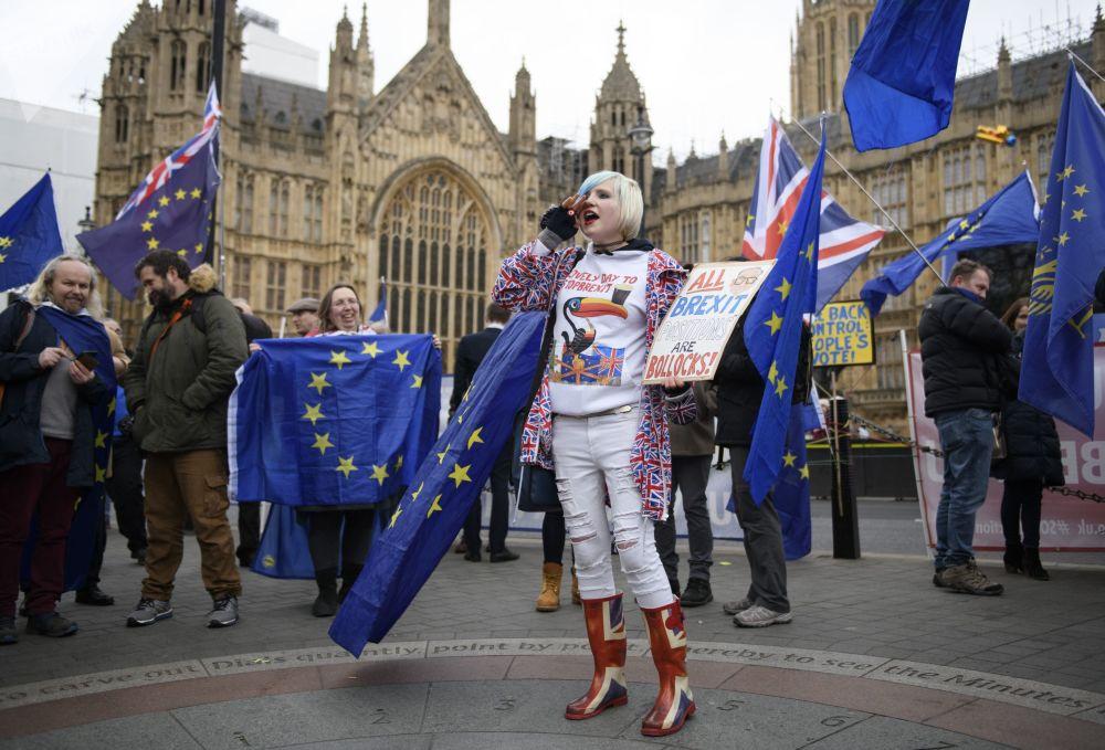 مظاهرات ضد خروج بريطانيا من الاتحاد الأوروبي، لندن 15 يناير/ كانون الثاني 2019