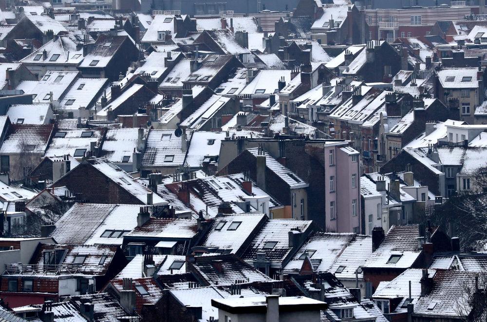 أسطح منازل مغطاة بالثلج في بروكسل، بلجيكا 23 يناير/ كانون الثاني 2019