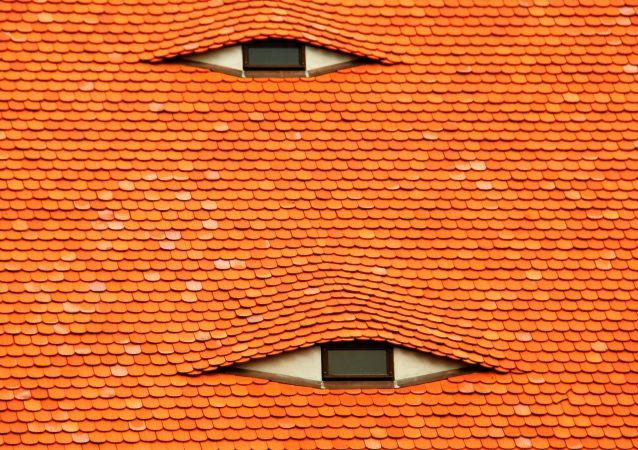 صورة Roof Resident - الحائزة على المرتبة الحادية عشر
