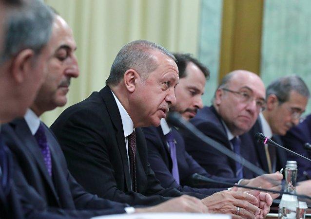 الرئيس الروسي فلاديمير بوتين ونظيره التركي رجب طيب أردوغان في لقاء سوتشي، روسيا 14 فبراير/ شباط 2019