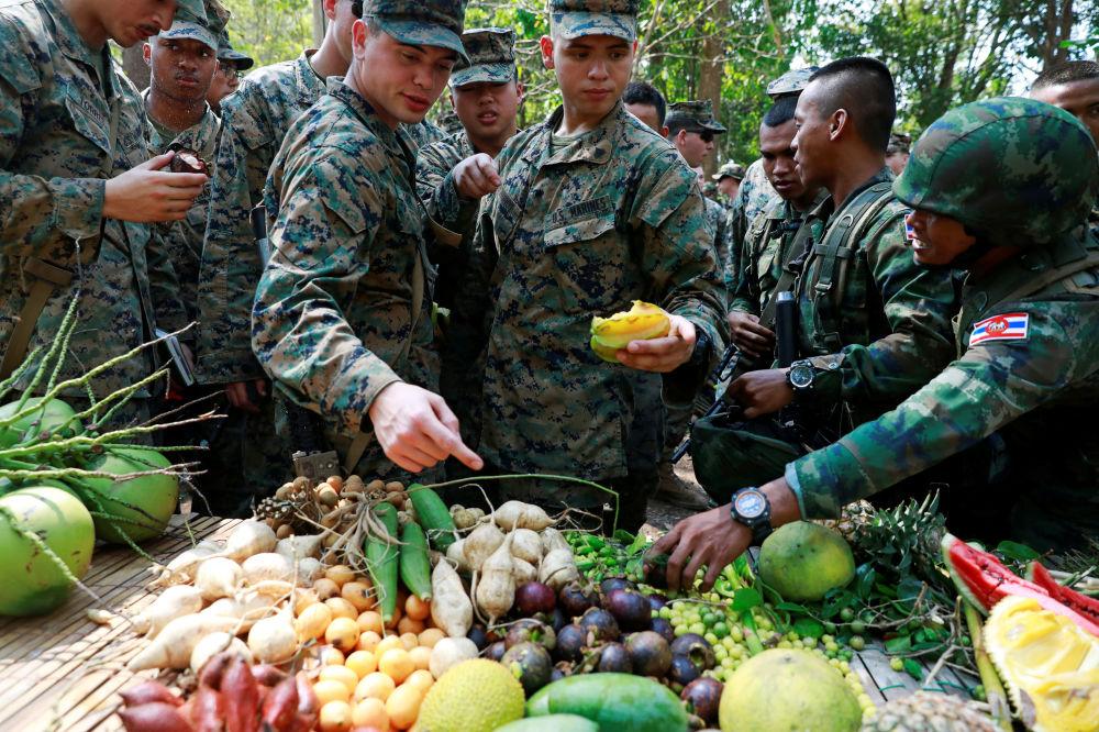 مشاة البحرية الأمريكية والجنود الكوريين يأكلون الفواكه، في إطار لقاء التدريبات العسكرية المشترك كوبرا غولد (Cobra Gold) بين الجيشين الأمريكي والتايلندي في مقاطعة تشونبوري الساحلية في 19 فبراير/ شباط عام 2018.