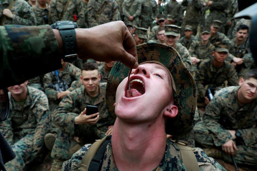 جندي يأكل دودة الأرض خلال التدريبات العسكرية كوبرا غولد (Cobra Gold) في تشانثابوري، تايلاند، 14 فبراير/ شباط 2019