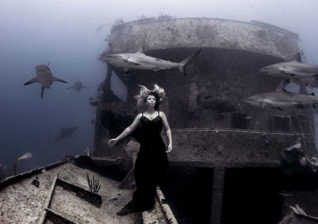 صورة بعنوان نزهة مسائية مع الأصدقاء (Evening Stroll with Friends) للمصور الأمريكي كين كيفر (Ken Kiefer)، الحائز على جائزة الإشادة بشدة في فئة حطام