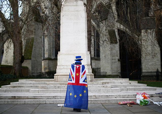 متظاهر مناهض لخروج بريطانيا من الاتحاد الأوروبي خارج مجلس النواب في وستمنستر بلندن