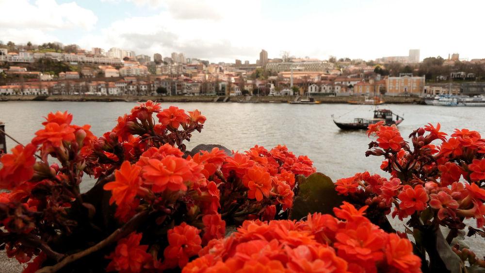 نهر دورو في بورتو، البرتغال