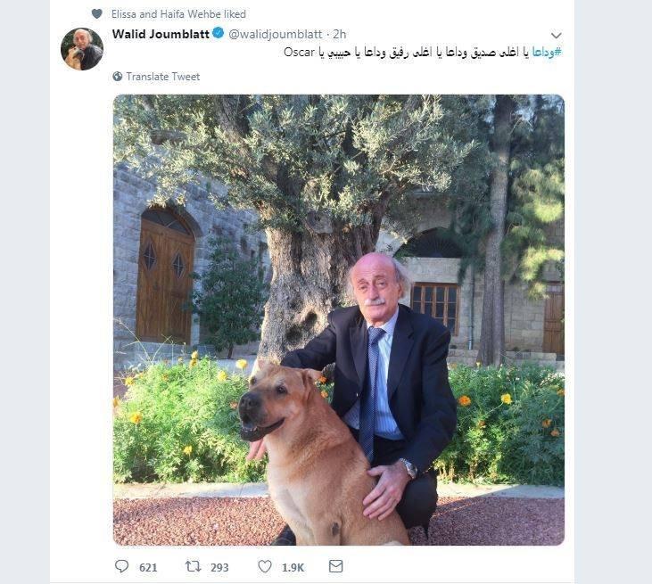 صورة لوليد جنبلاط مع كلبه تحوز على إعجاب هيفاء وهبي ونانسي عجرم