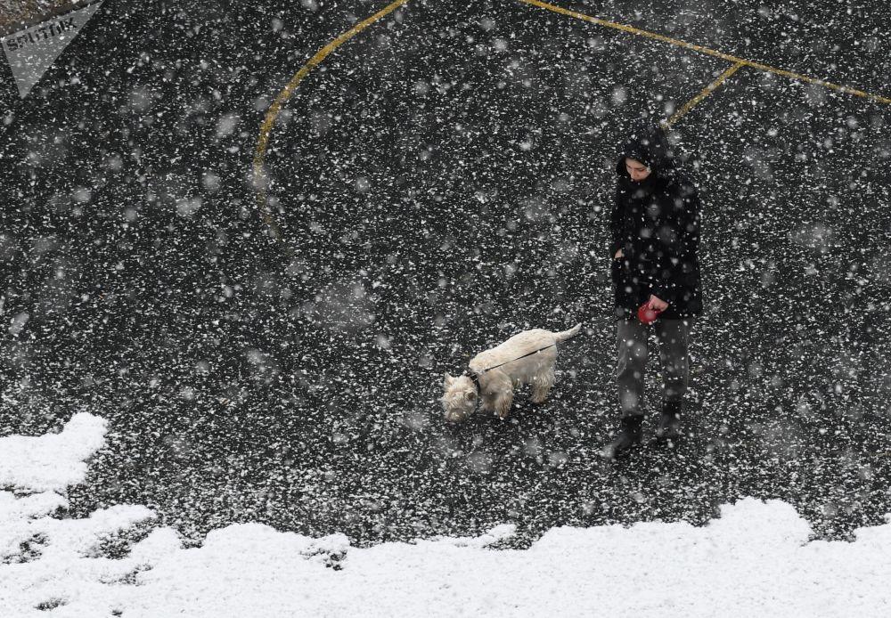 فتاة تتجول مع كلبها لحظة تساقط الثلوج في مدينة ميتيشي الروسية بضواحي موسكو