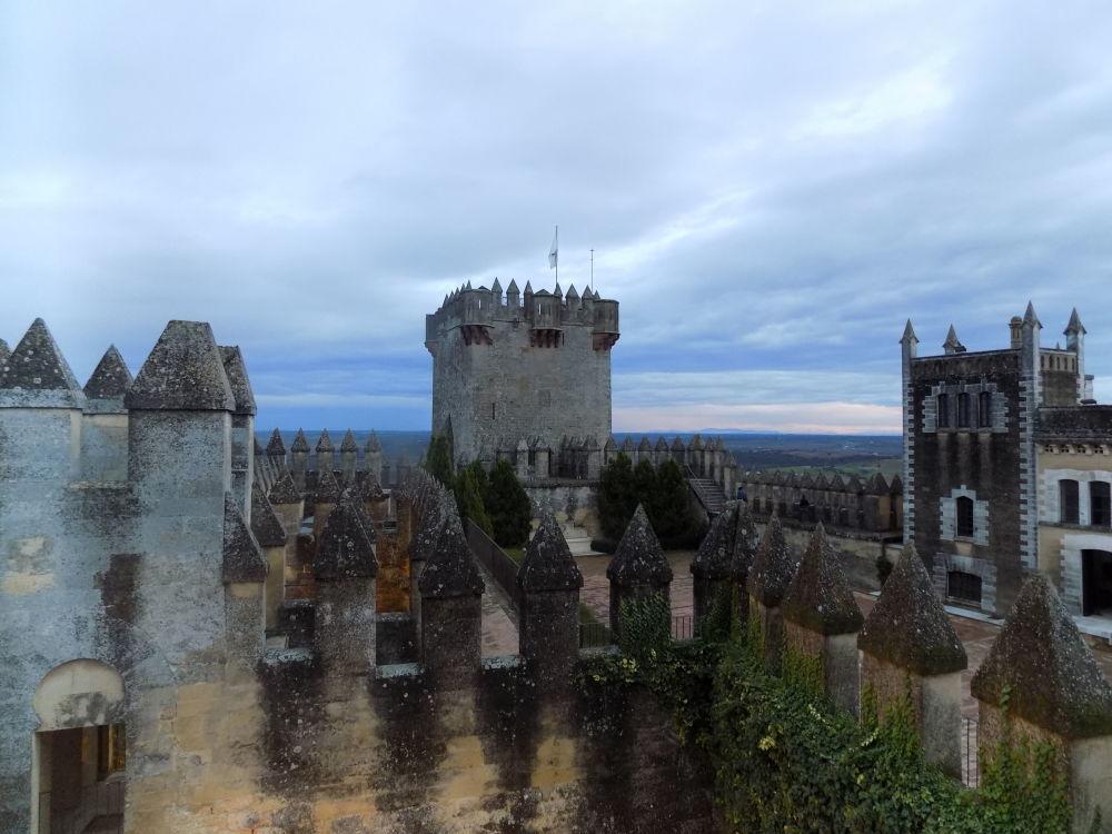 داخل قلعة ألمودوفار ديل ريو، إسبانيا