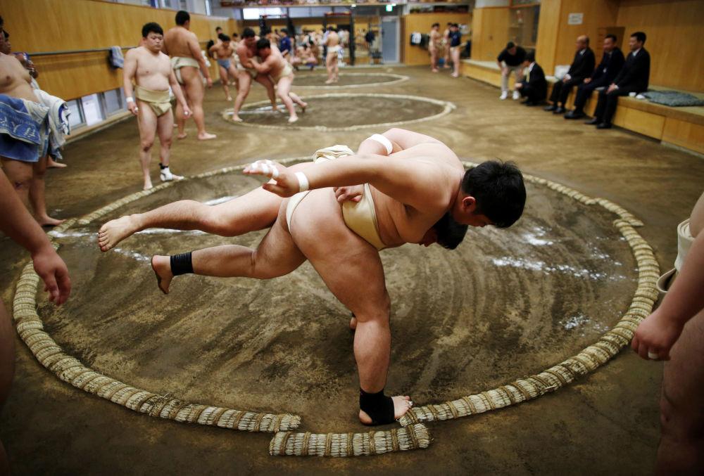 طلاب كلية ينشطون في نادي المصارعة السومو بجامعة نيبون لعلوم الرياضة في طوكيو، اليابان، 20 مايو/ أيار 2019