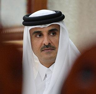 أمير قطر الشيخ تميم بن حمد آل الثاني