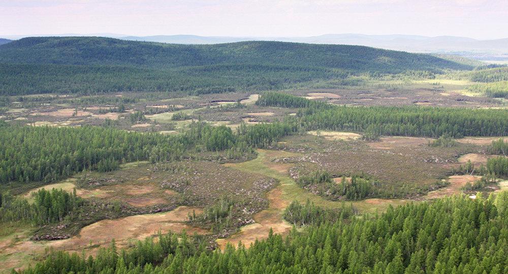 منطقة انفجار نيزك تونغوسك بعد مئة عام من الحادث