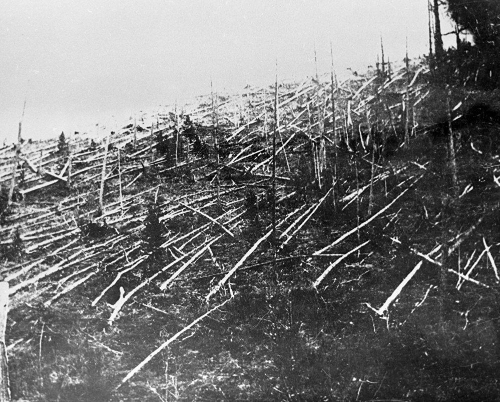 منطقة سقوط نيزك تونغوسك في إقليم كراسنويارسك، سيبيريا بعد وصول العلماء عام 1927 إلى مكان الحادث