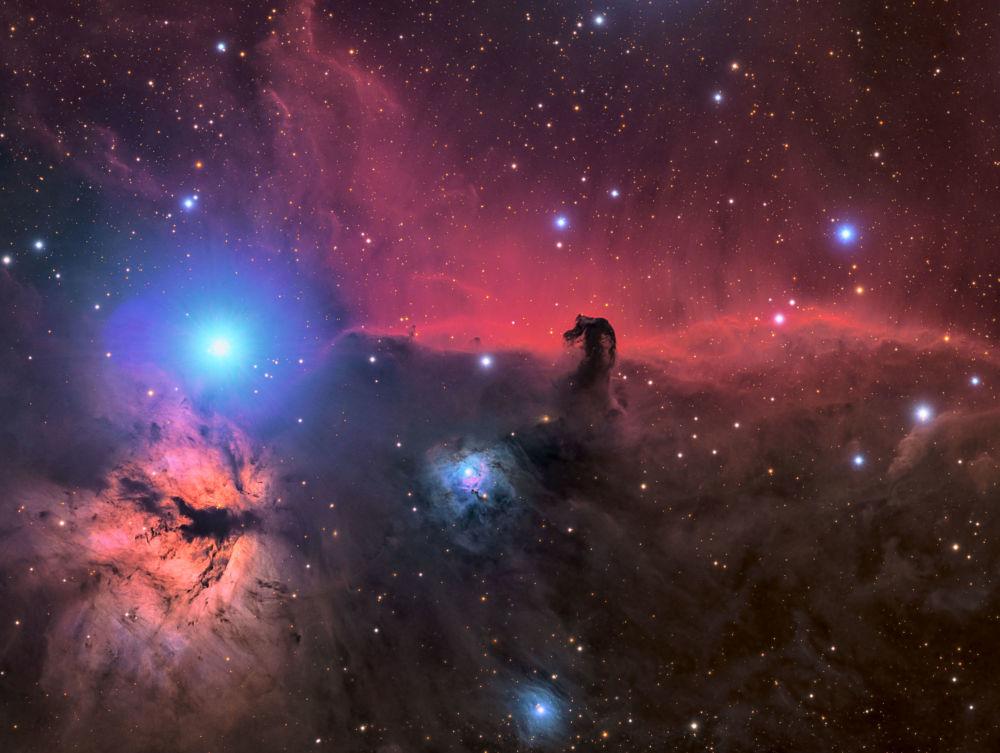 صورة بعنوان رأس الحصان وسديم اللهب من قبل المصور الأمريكي كونر ماثرتي، ضمن القائمة القصيرة في مسابقة التصوير الفلكي الفوتوغرافي للعام 2019