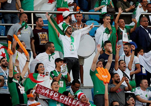 جماهير منتخب الجزائر