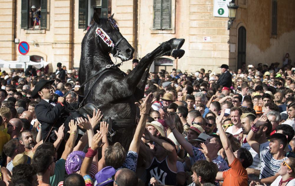 متسابق الخيول خلال فعالية كاراغول دي بورن (Caragol des Born) في مهرجان نيران القديس يوحنا المعمدان في إسبانيا، 23 يونيو/ حزيران 2019