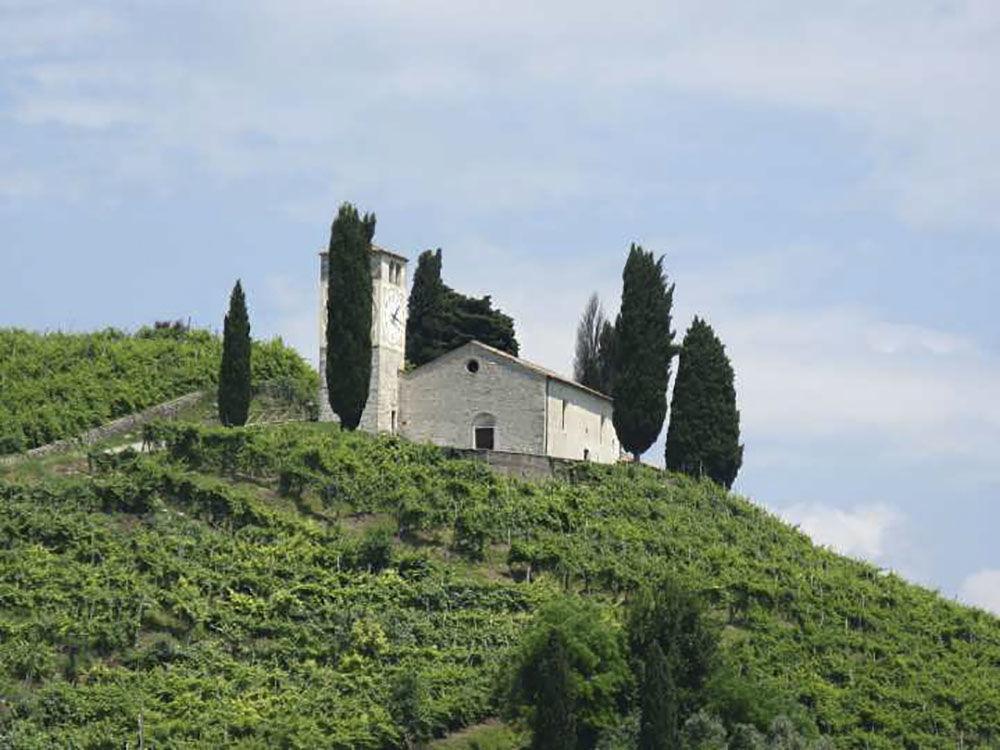 تلال بروسيكو دي كونجليانو وفالدوبياديني في إيطاليا – تقع شمال شرق إيطاليا، وتضم جزءاً من المناظر الطبيعية لإنتاج النبيذ في منطقة بروسيكو