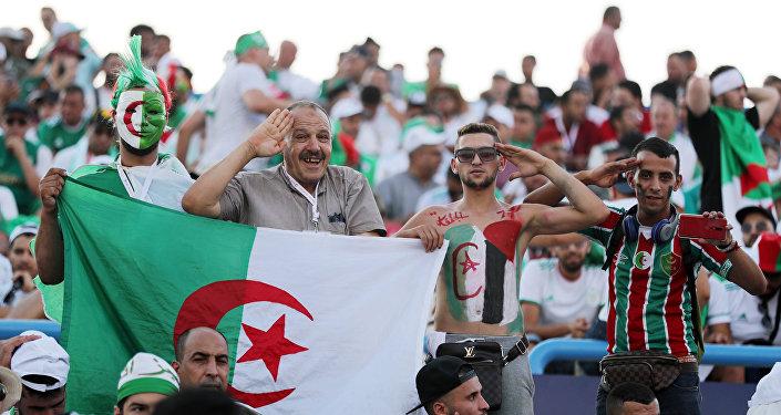 جماهير منتخب الجزائر في مباراة الجزائر وكوت ديفوار