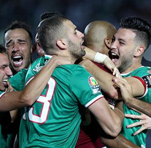 لاعبي الجزائر يحتفلون بالفوز على كوت ديفوار