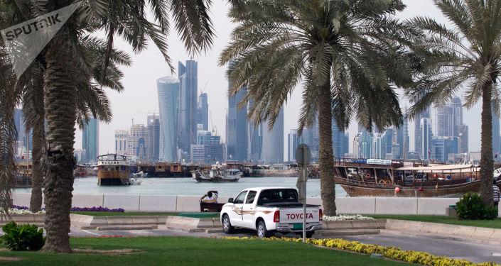 شجر النخيل في الدوحة