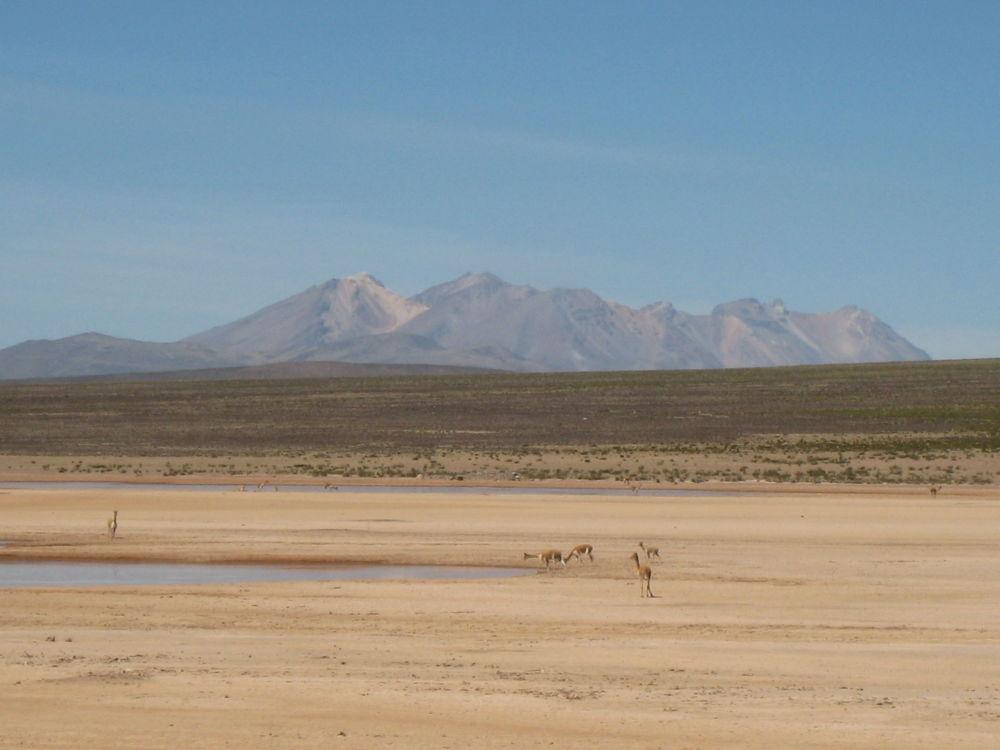 منطقة  الألتيبلانو، امتداد لجبال الأنديز، غرب أمريكا الجنوبية