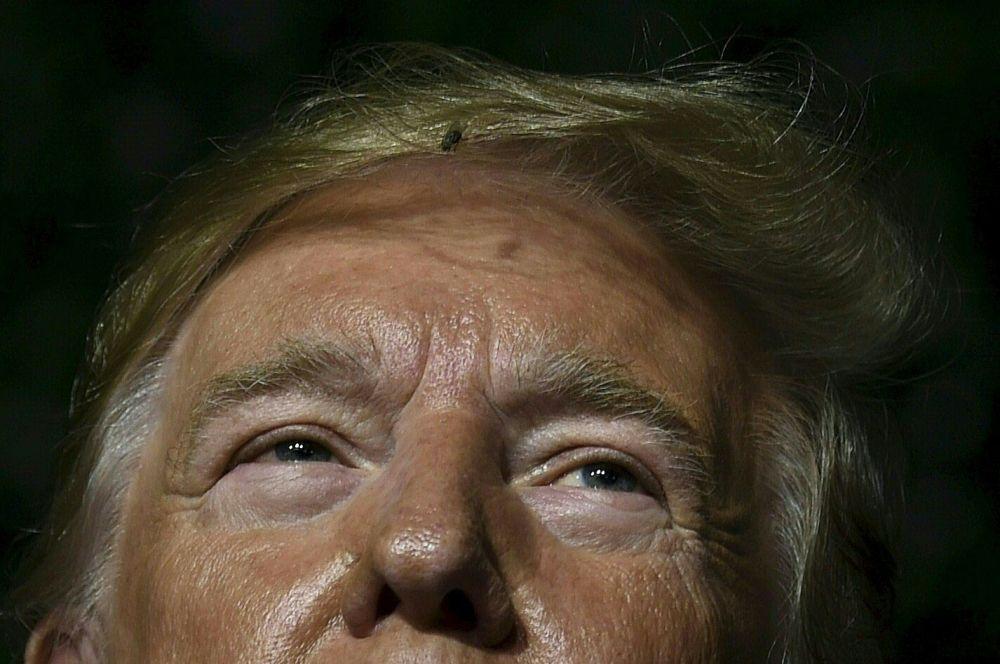 ذبابة في شعر الرئيس الأمريكي دونالد ترامب أثناء إلقاء كلمته في جيمستاون، فرجينيا 30 يوليو/ تموز 2019