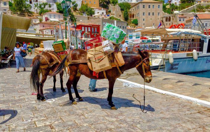 بفضل التشريع الذي يحميها ويحظر حركة سير السيارات، لم تعرف مدينة هيدرا اليونانة مصير العديد من المواقع السياحية الأخرى وبقيت على حالها.