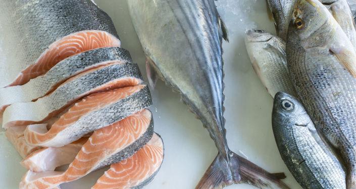 تسجيل رقم قياسي… صياد يصطاد سمكة سلمون تزن 24 كغ