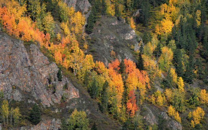 الخريف قصير ولا يمكن التنبؤ به في سيبيريا. يقدّر سكان هذه المنطقة الكبيرة هذا الموسم الذي تكون فيه الطبيعة مذهلة بشكل خاص.