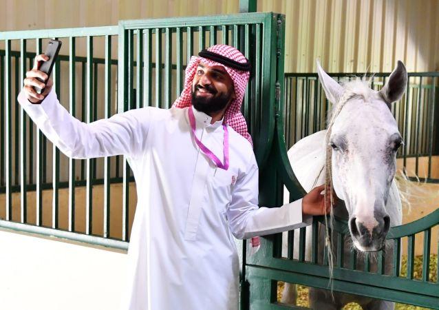 الحصان العربي في مزرعة خاصة لتربية الخيول في مدينة الظهران بالمملكة العربية السعودية