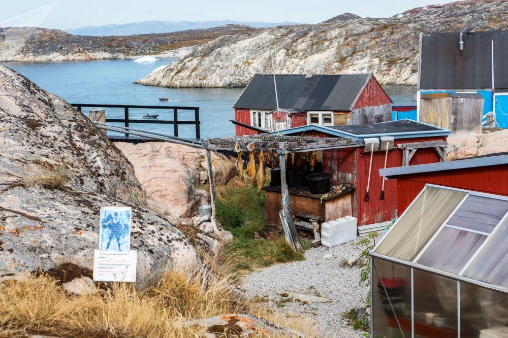 منازل في مدينة ايلوليسات في جزيرة غرينلاند