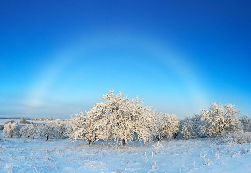 صورة بعنوان قوس قزح ضبابي أبيض فوق حديقة الشتاء، للمصورة يلينا بيلوزوروفا، المؤهلة إلى التصفيات النهائية لمسابقة مصوِّر الطقس لعام 2019 (الصورة في كاريليا، روسيا)