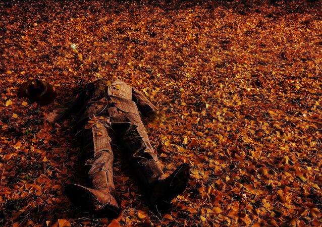 جثةpixabay