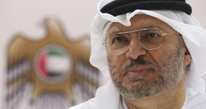 قرقاش: لا تزال هناك قضايا بحاجة للتعاون مع قطر لحلها
