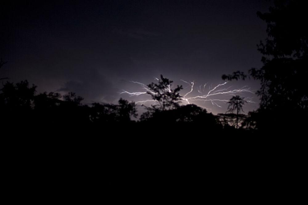 متنزه سابو الوطني في ليبيريا