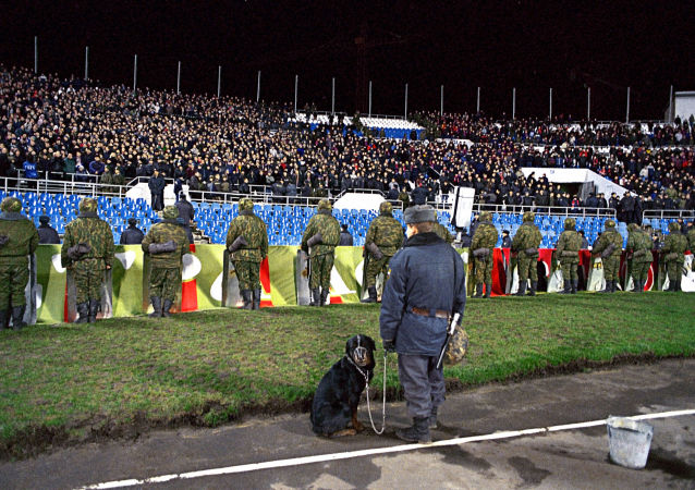 كلب في ملعب كرة قدم